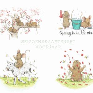 voorjaar kaartenset